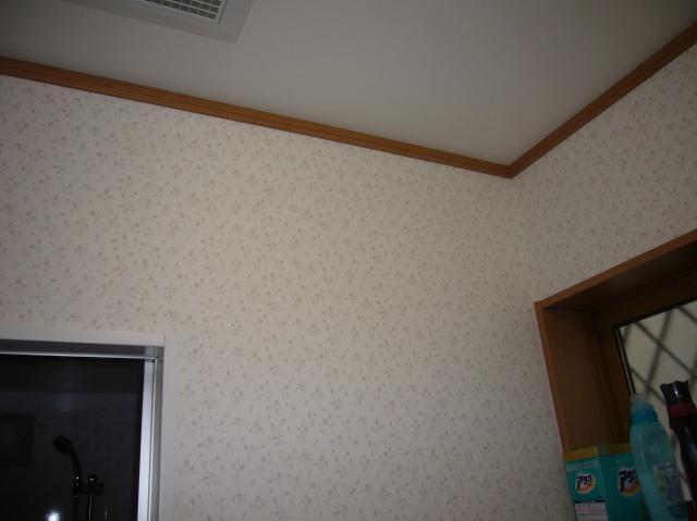 p11904331_thumbnail