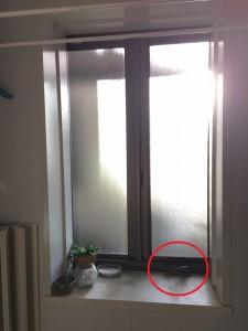 浴室 スイング窓