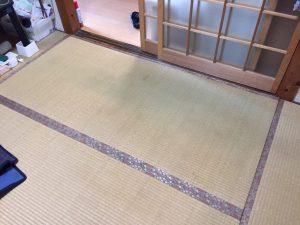 畳を上げて床下を点検